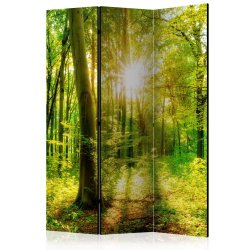 """Room Divider """"Forest Rays"""" (135 x 172 cm)"""