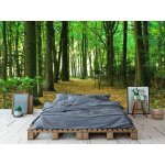Wall mural green forest in summer