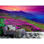 Wall mural magical pink rhododendron flowers on summer mountain
