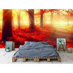 Wall mural misty old forest