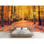 Wallpaper Mural Pathway In The Autumn Forest