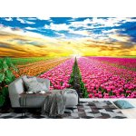 Wall Mural Tulip Field In The Netherlands