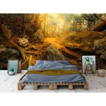 Wall mural fantasy jungle forest