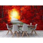Wall mural fantastic autumn forest