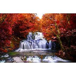 Wallpaper Mural Beautiful Waterfall In The Rainforest