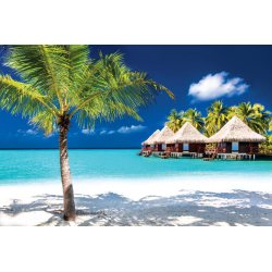Photo wall mural bungalows on a tropical island