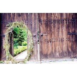 Wall mural old wooden door with metal fittings