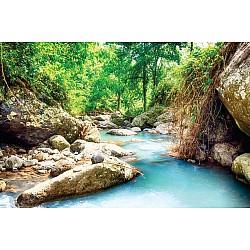 Photo wall mural rainforest stream on Bali