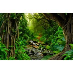 Wallpaper Mural Tropical Jungle With River