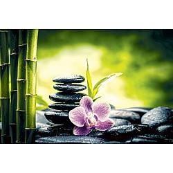 Wallpaper Mural Zen Basalt Stones, Orchid, and Bamboo (45324226)