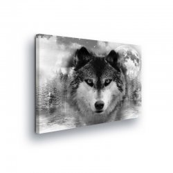 Animals & Living Canvas Photo Print (PP10147O1)