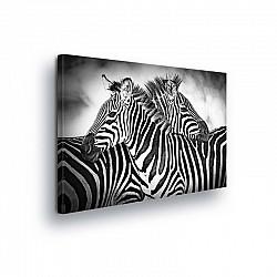 Animals & Living Canvas Photo Print (PP10159O1)