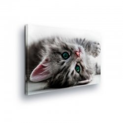 Animals & Living Canvas Photo Print (PP10203O1)