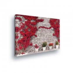 Stone Walls Canvas Photo Print (PP20008O1)