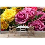 Wallpaper Mural White and Purple Roses (926)