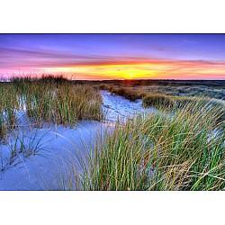 Wallpaper Mural Dunes Sunset (528)