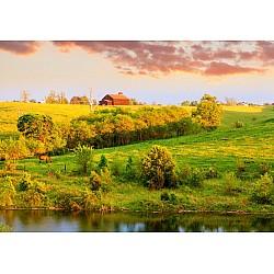 Wallpaper Mural Farm Landscape (966)