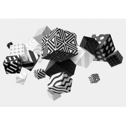 3D Black And White Cubes Photo Wallpaper Mural (11906VE)
