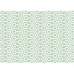 Green Geometric Retro Pattern Photo Wallpaper Mural (10697VE)