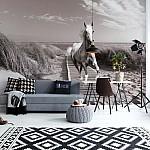 White Horse Beach Black And White Photo Wallpaper Mural (3136VE)