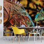 Iguanas-Photo-Wallpaper-Mural-(10568VE)
