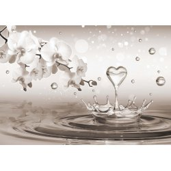 Water-Drops-Heart-Flowers-Sepia-Photo-Wallpaper-Mural-(3495VE)