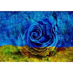 Designer Mural 13499V8 - Blue Flower