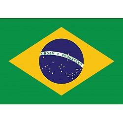 Flag Brasil Photo Wallpaper Mural (481VE)