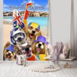 Bondi Beach Dogs Surfers Selfie Wallpaper Mural (12853V4A)