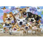 Cats and Dogs Summertime Group Selfie Wallpaper Mural (12873VE)