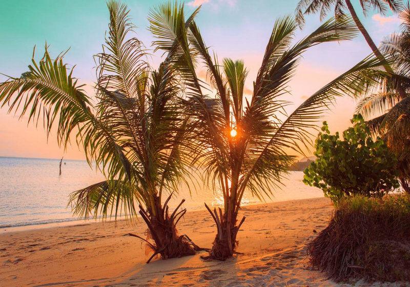 Wallpaper Mural Tropical Sunset Beach (1044)