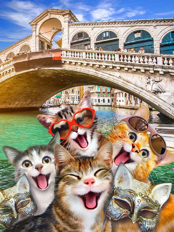 Cats in Venice Selfie Wallpaper Mural (12862V4A)